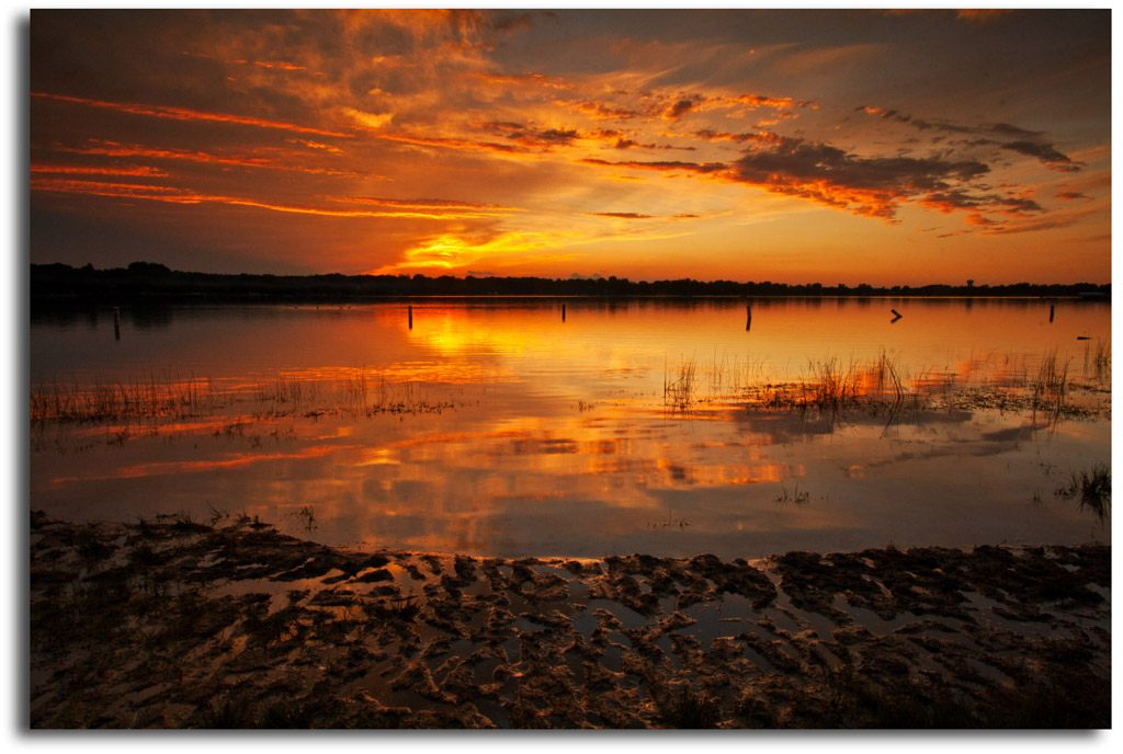"sunset over a lake in Shoreview MN, CC ""Minnesota Wild"" by Priya .S"