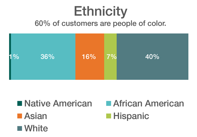 Chart showing ethnicity of customers served