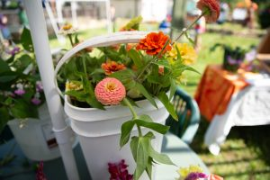 A bucket of orange and pink zinnias rests on a table.